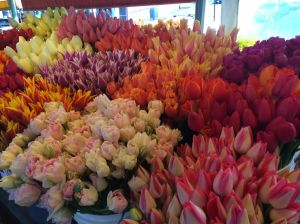 Gorgeous tulips (12 for $10!) at Pike Place Market